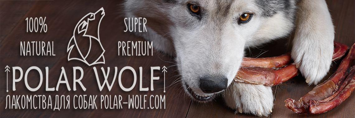 Магазин сушеных лакомств для собак